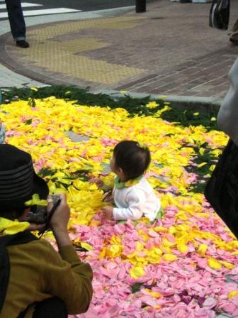 Ginza flower carpet